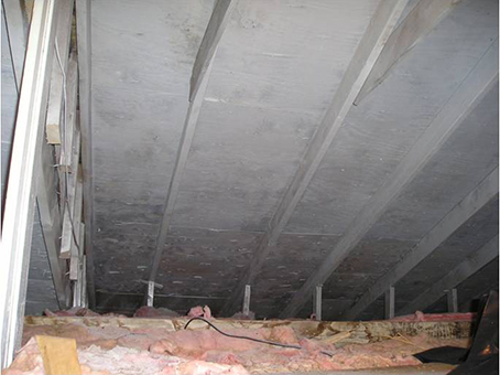 Ceiling After Mold Removal